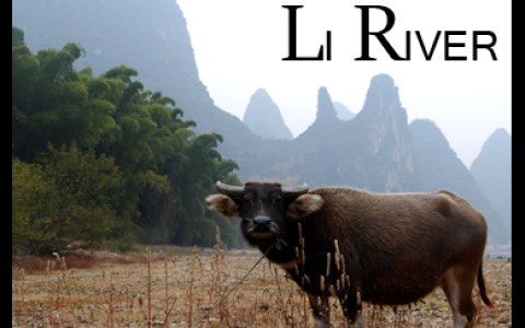 Rafting the Li River