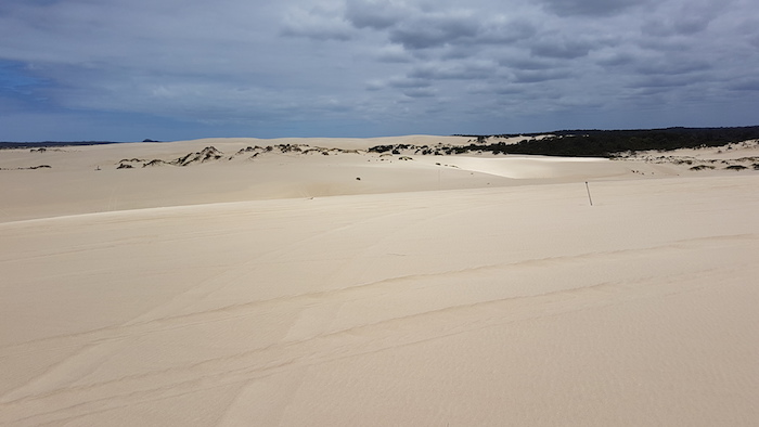 Heading to the beach on Yeagarup Dunes.