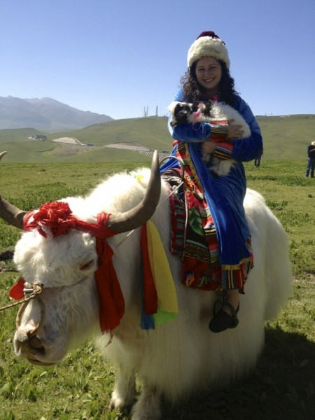 riding yak