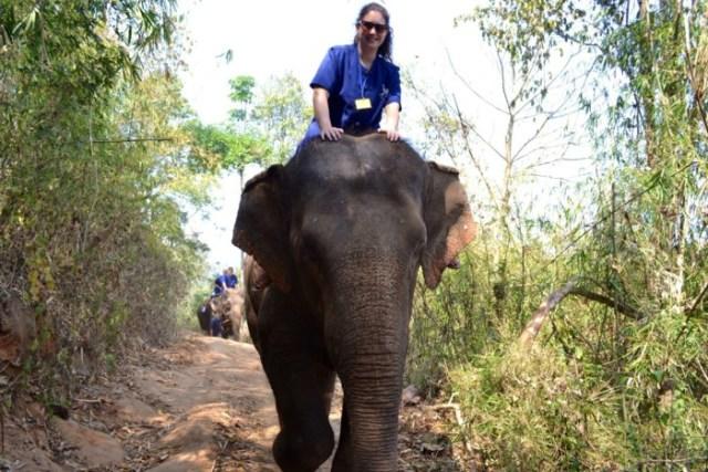 Riding elephant bareback