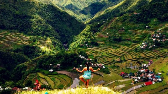 Sagada Terrace Farms