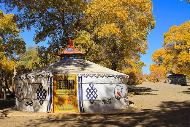 Yurt Mongolia