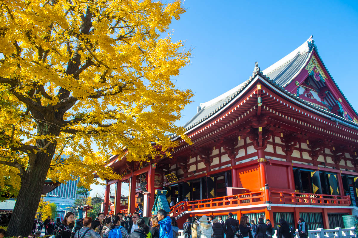Japan's Tourist Trail