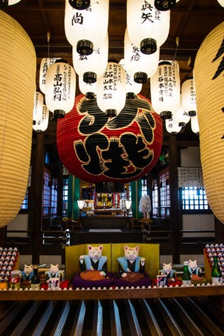 Osaka cat shrine