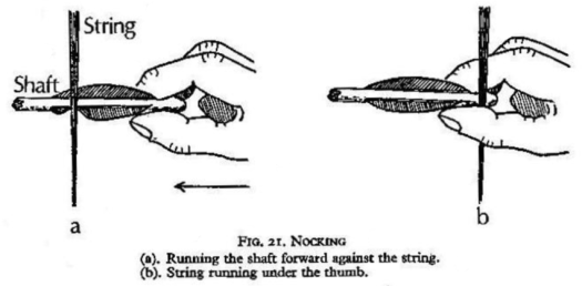 motion of the Draw hand during Nocking