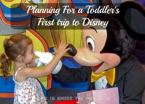 Preparing for a Toddler's First Trip to Walt Disney World