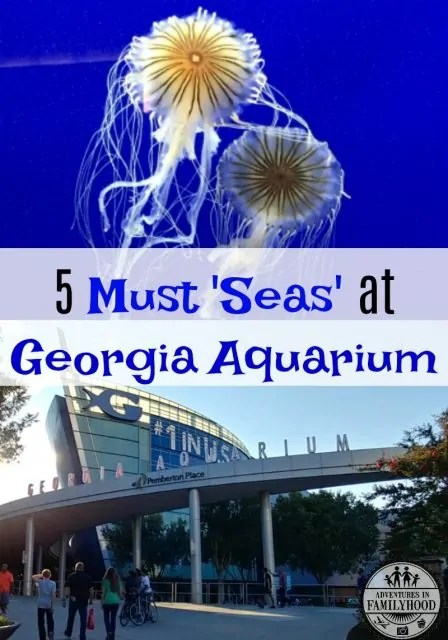 5 Georgia Aquarium Must Seas
