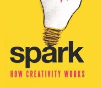 Spark- A Book Review