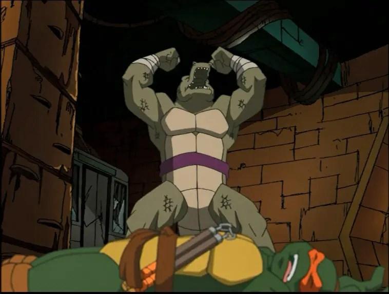 Teenage Mutant Ninja Turtles 2003 Season 3 Part 2