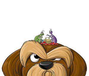 DIY, fleas, dogs, natural flea treatment