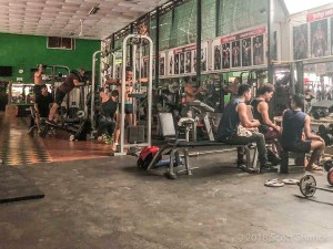 Inside Angkor Muscle Gym in Siem Reap