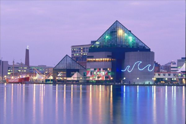 national aquarium baltimore via pinterest