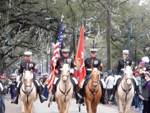 marines riding and marching down the streets of New Orleans during carnival season. Learn about Mardi Gras and extra tips on making your trip successful at adventuresofb2.com