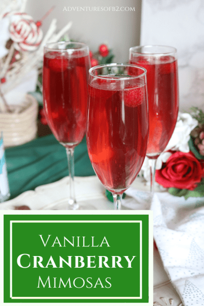 Vanilla Cranberry Mimosas is easy to make and the perfect Christmas cocktail of the season. Bring to your next holiday party to spread Christmas cheer with this fabulous holiday cocktail.