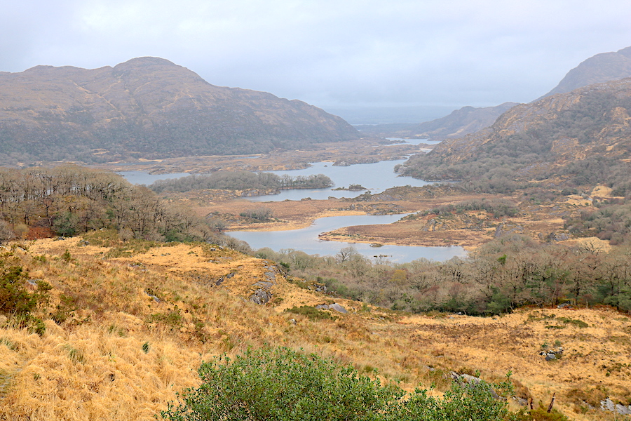 Enjoy a breathtaking view on your way around the Ring of Kerry. Ladies View is a fantastic stop on your Ireland Road trip to get views that are definitely picture worthy! - Adventuresofb2.com