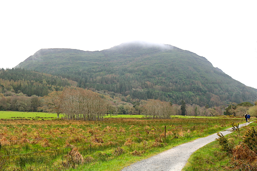 On your trek to the Torc Waterfall in Ireland, enjoy the beauty around you as you walk the hiking path. This is one of the best stops on your road trip through Ireland! - Adventuresofb2.com