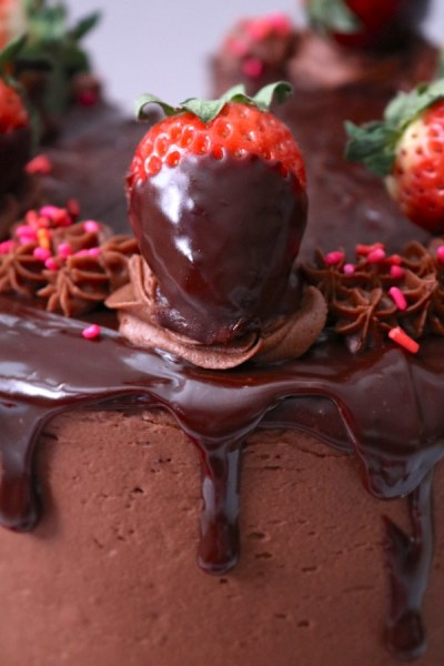 How perfect does this chocolate strawberry cake look with the drips of chocolate ganache coming down the sides of the delicious cake. It's a chocolate cake with strawberry filling and chocolate ganache layered in between. All of it wrapped in a creamy chocolate frosting and dripped with chocolate ganache and chocolate covered strawberries for the ultimate finish. It's the best party cake for any party, especially romantic occasions like anniversaries or Valentine's day! - adventures of b2