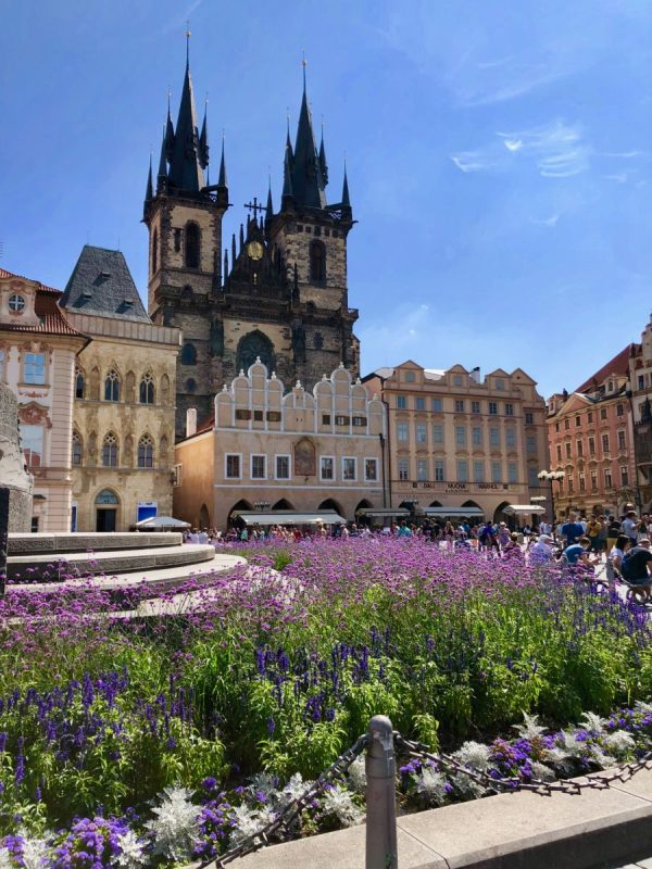 What is it like to take a Viking Cruise