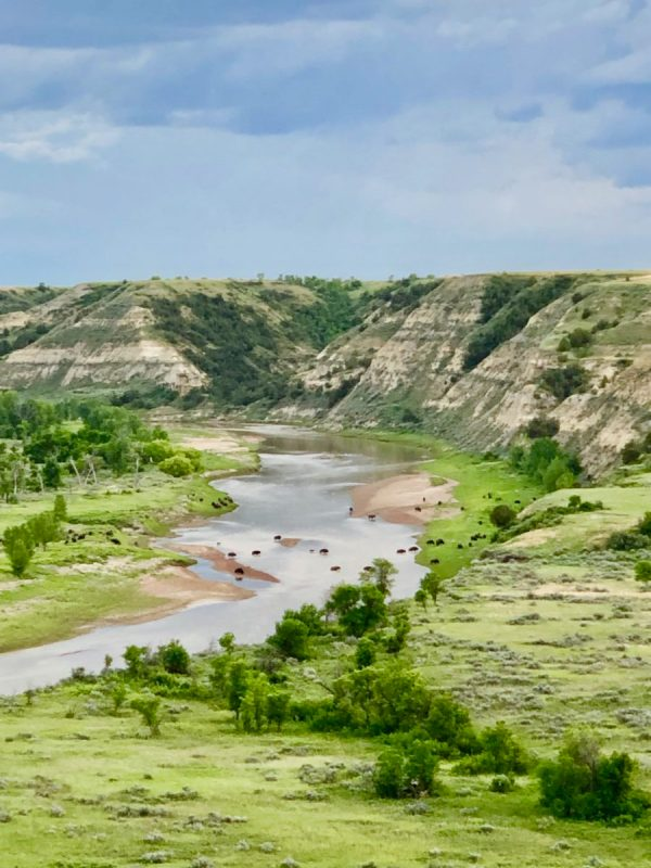a trip to Theodore Roosevelt National Park