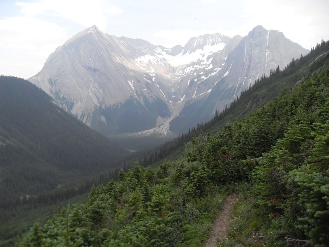 Looking S from the headwall on the Maude-Lawson trail.