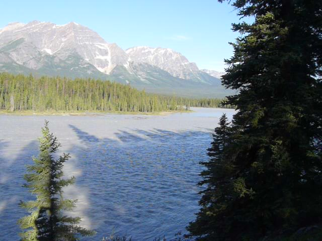 Looking downstream along the Athabasca river from SPHP's favorite picnic ground in Jasper National Park.