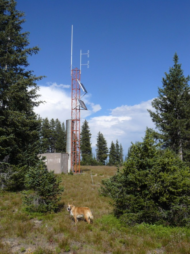 Lupe reached the communications site on Black Mountain. Photo looks NE.
