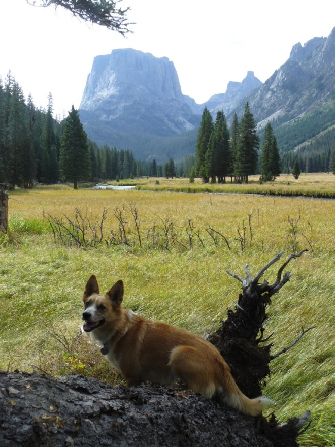 Lupe and Squaretop Mountain, WY 8-30-15