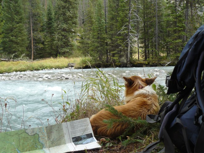 Lupe at Green River, Wind River Range, WY 8-30-15