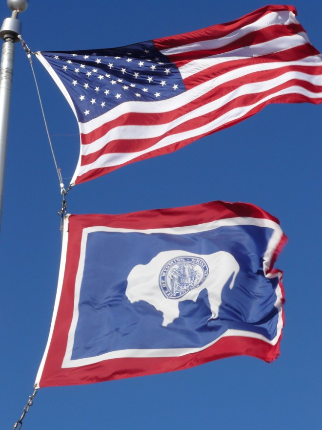 Gotta love that buffalo on the Wyoming state flag!