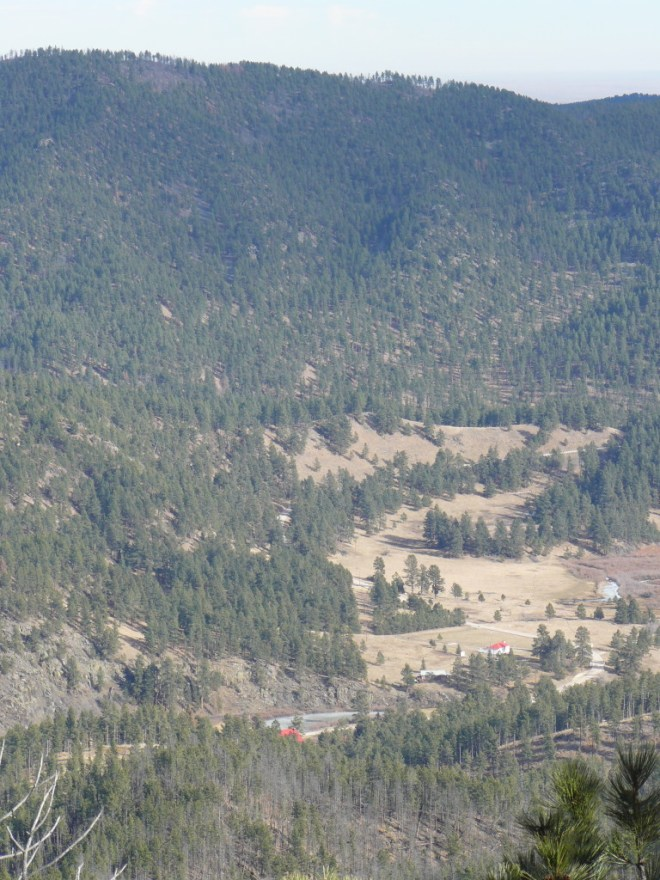 Looks like there are still a few trees left! Looking NE from Silver Peak toward Silver City.