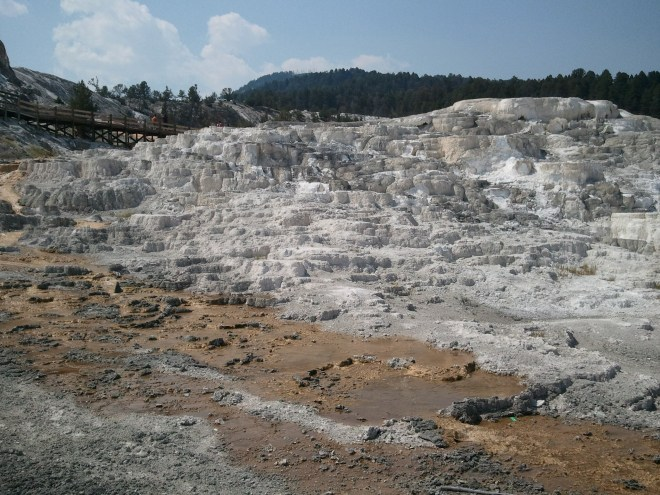 Mammoth Hot Springs, Yellowstone NP, WY 8-13-12