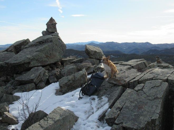 Lupe, now satisfyingly full of cheese sandwich, at the break spot just N of the summit cairn. Photo looks S.