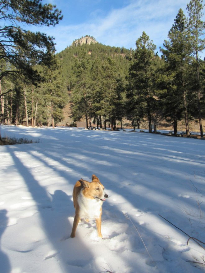 Lupe arrives at the Steamboat Rock picnic ground. Photo looks N at Steamboat Rock.