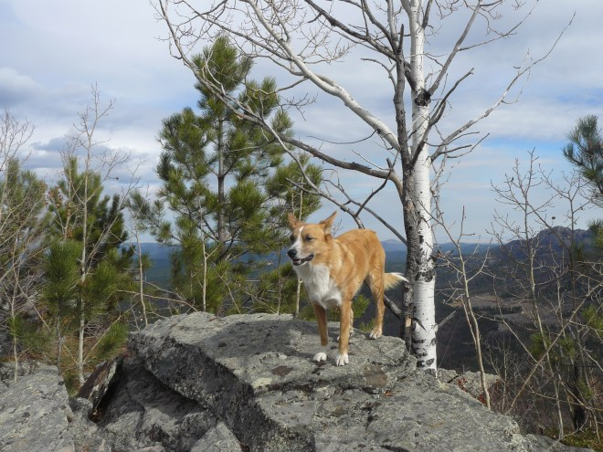 Lupe on the true summit of St. Elmo Peak! Photo looks ENE.