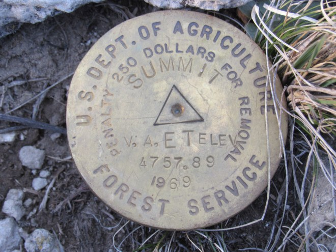 Survey benchmark at the Soldier Creek Wilderness High Point.
