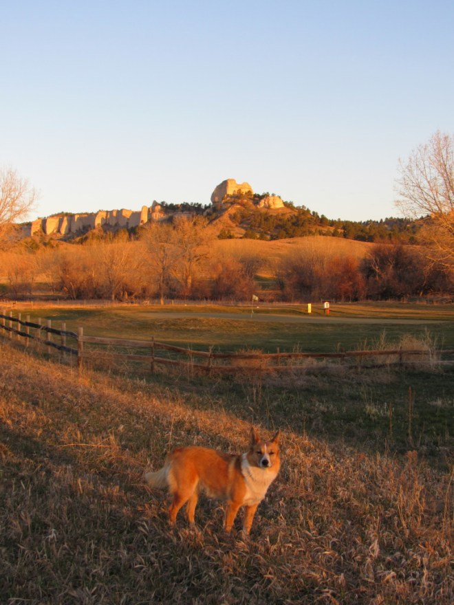 Lupe likes chasing balls, but she isn't much into golf. She still stopped at this golf course W of Crawford due to the great view of Saddle Rock, part of the Red Cloud Buttes. Photo looks WNW.
