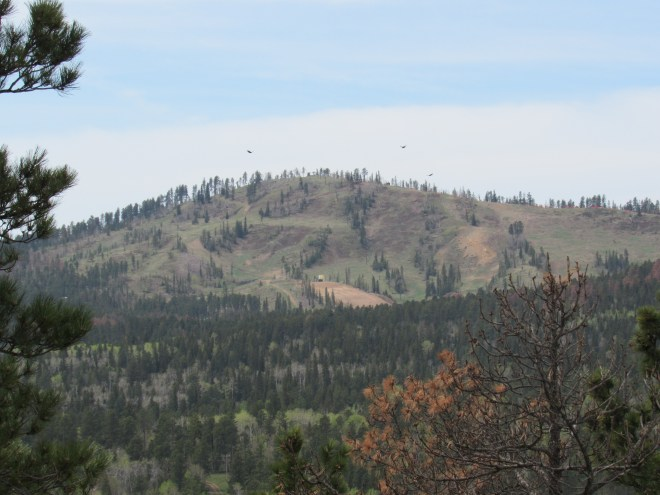 Big birds were circling near Deer Mountain (6,652 ft.). Photo looks SW using the telephoto lens.