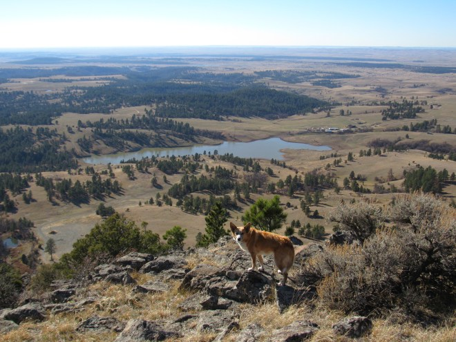Missouri Buttes Lake and the Lake Guest Ranch HQ (seen to the R of the lake). Photo looks SW.