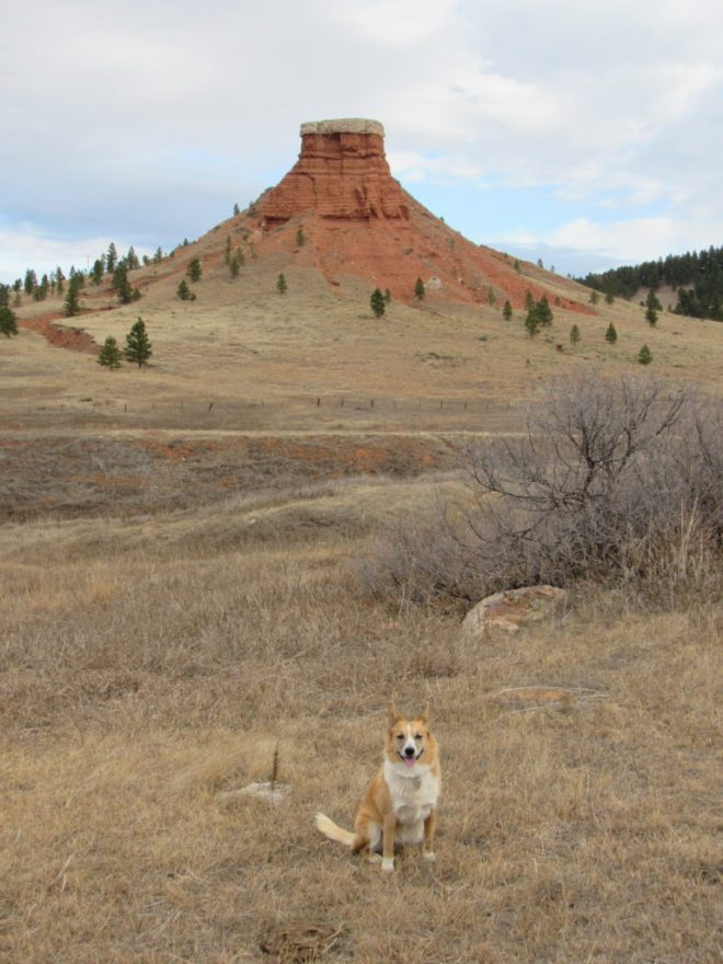 Lupe S of Red Butte. This fin of red clay capped by a layer of limestone is a somewhat unusual landmark in the Black Hills area. It is more typical of parts of Wyoming farther W. Photo looks N.