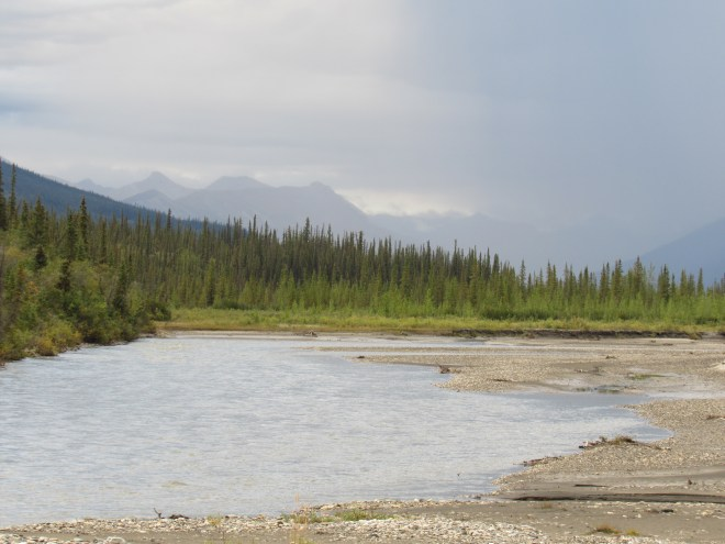 Still farther N beyond the Dietrich River were wild boreal mountains seen through the haze of rain showers. Photo looks N.