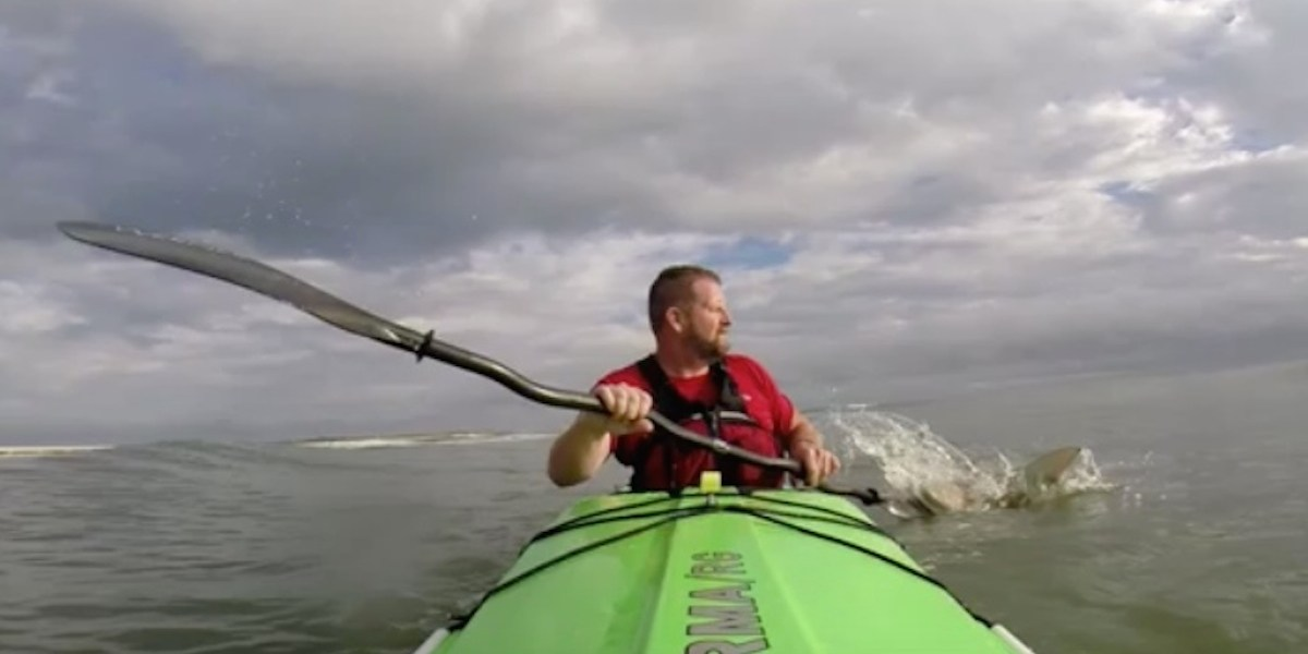 Shark pursues kayaker to beach in suspenseful encounter off Florida