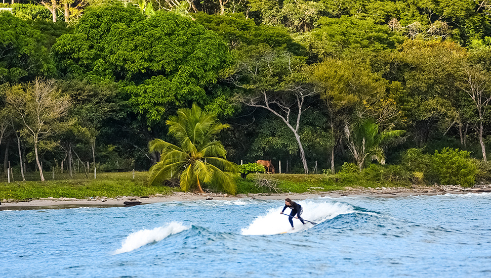 Tropical SUP Retreats for the Ultimate Getaway