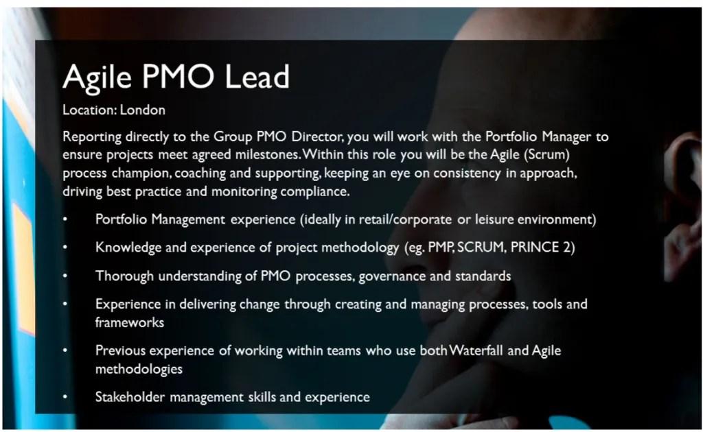 agile-pmo-lead