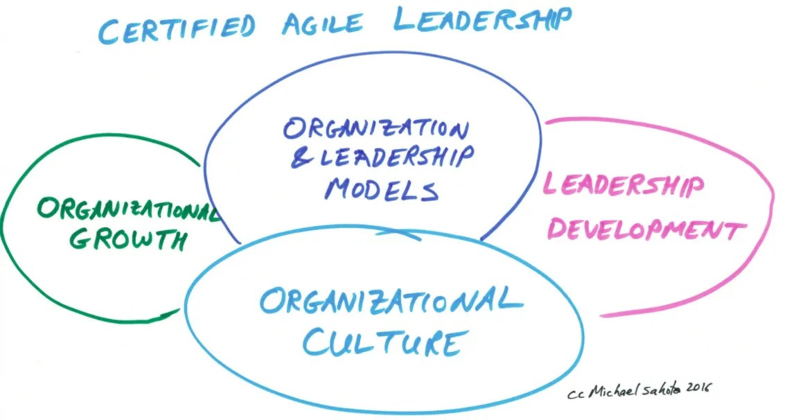 Review Of Certified Agile Leadership Course An Insight To Yourself