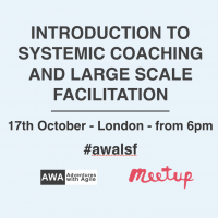 Intro-Large-Scale-Facilitation-Systemic-Coaching