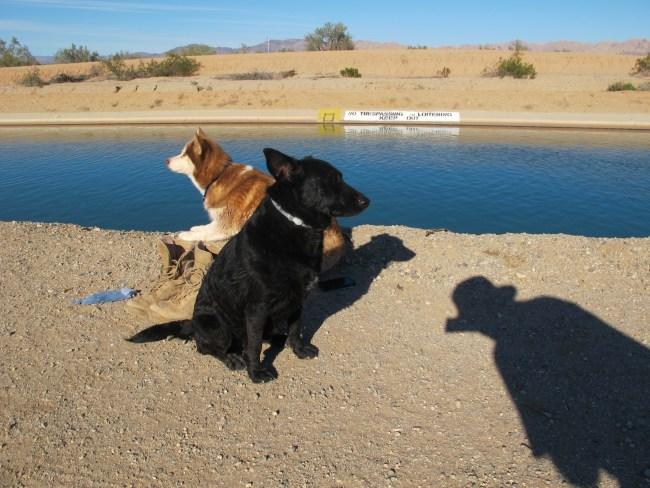 Willow and Amara at the Coachella Canal