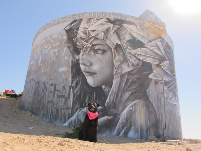 photo-realistic painting of a pretty female face on the side of an old concrete tank