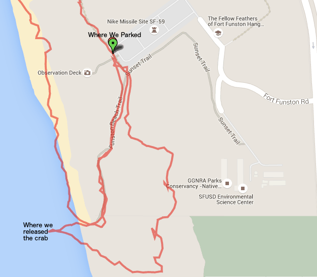 GPS Track Detail of Our Crab Rescue Trek