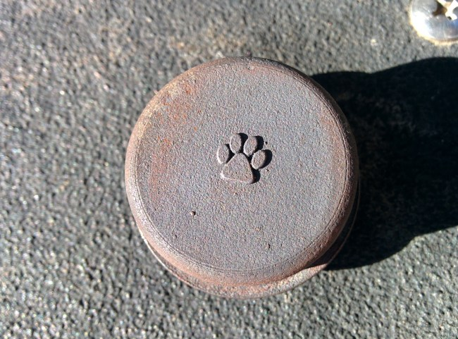 Just a Simple Paw Print