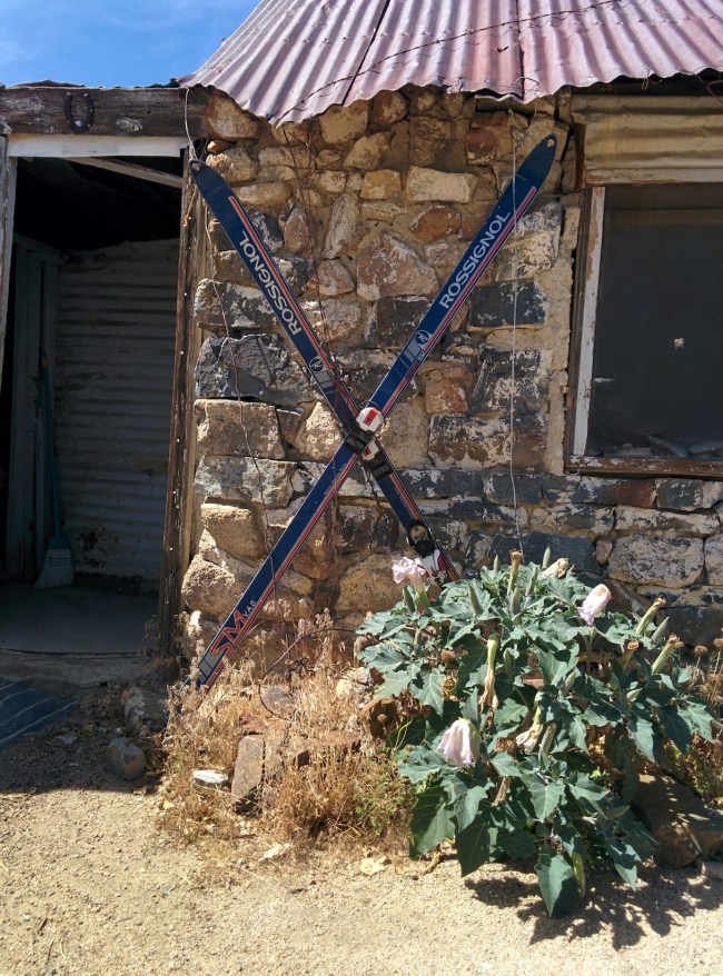 skis inexplicably used as a decorative touch on the outside wall of the cabin